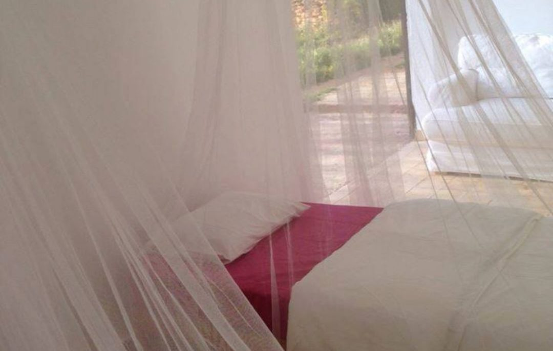 bed with net